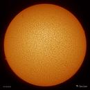 Sol - 10/14/2018,                                  Damien Cannane