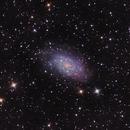 NGC2403 Binned 2x2,                                SJK