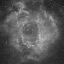 NGC2244 H-Alpha,                                Sergio Alessandrelli