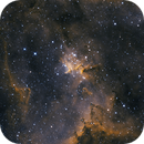 IC1805, The heart of the heart nebula,                                Steven Bellavia