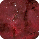 IC 1396 The Elephant's Trunk Nebula,                                Marco Vipiana