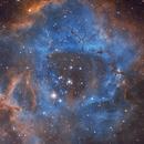 The Rosette Nebula in Monoceros,                                Samuli Vuorinen
