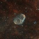 Le Cerveau de l'Espace,                                Vincent Caron