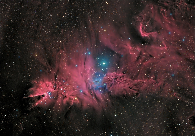 NGC2264 Cone Nebula,                                Michael Caligiuri