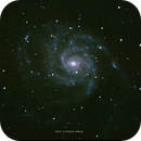 M101 - Pinwheel Galaxy,                                Nisan Oguz