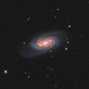NGC 2903,                                Chris Sullivan