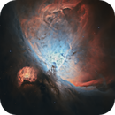 M42 Great Orion Nebula 20210204 3780s SHORGB 01.5.6,                                Allan Alaoui