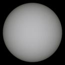 Spotless Sun,                    Mason Chen