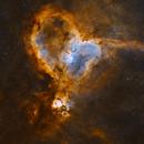 The Heart Nebula Bi-Colour,                                Kasra Karimi
