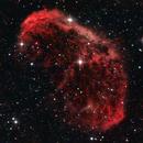 Crescent Nebula NGC 6888,                                Mike Bleiweiss