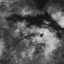 Gamma Cyg Nebula in HA (pre-visualization of narrow band in development),                                Jeff Ball