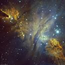 Christmas tree cluster, Cone nebula,                                adamphillips