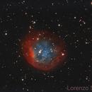 Abell 31,                                Lorenzo Siciliano