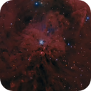 NGC 1999,                                Fabian Rodriguez...