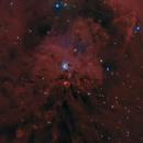 NGC 1999,                                Fabian Rodriguez Frustaglia
