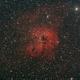 Emissionsnebel IC 410 mit offenem Sternhaufen NGC 1893 im Fuhrmann (Auriga),                                astrobrandy
