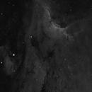 pelican in Ha 3nm,                                Paul