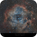 The Rosette Nebula (NGC 2238) in Monoceros with Hyperstar,                                Paul Baker