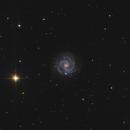 NGC 3184,                                Morris Yoder