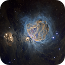 First Published Image! M42 Subtle (&final version for this winter),                                Paddy Gilliland