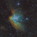 NGC 7380,                                Michael Völker