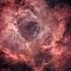 Rosette NGC2239 HaRGB Starless,                                Jocelyn Podmilsak