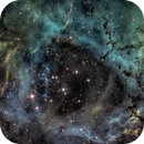 The Rosette Nebula / Caldwell 49 / Hubble Palette,                                Terry Robison