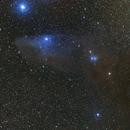 Blue Horsehead Nebula,                                Wilson Yam
