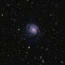 M101 WIdefield,                                Matej Kakiš