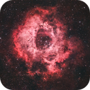 Rosette Nebula,                                Matt Greene