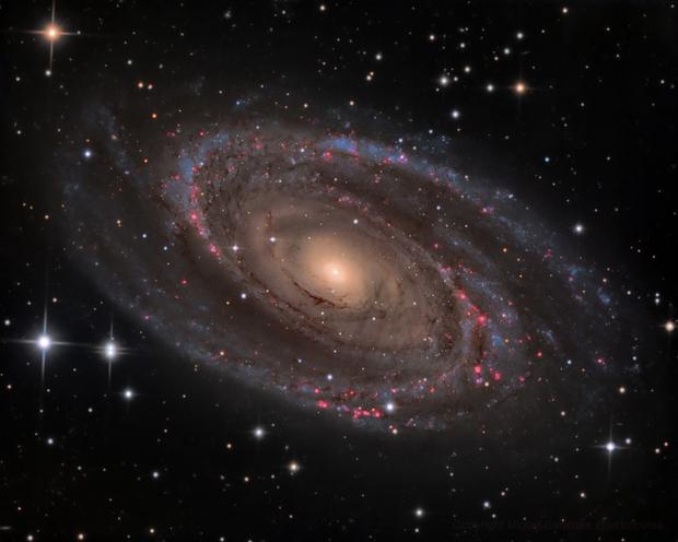 M81 Bode's Galaxy,                                Miguel Sanchez