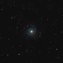 M74,                                BrunoD