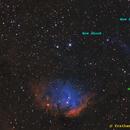The Tulip and the Cygnus X-1 bow shock,                    Prath Pavaskar