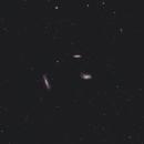 Leo Triplet • M65 • M66 • NGC 3628,                                Mikael De Ketelaere