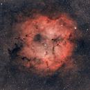 IC1396,                                decatur30033