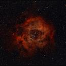 Nebulosa de la Roseta NGC 2237,                                Lluis Romero Ventura