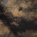 Dark nebulae near Sadr,                                Juan Lozano