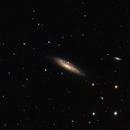 NGC 134  Squid Galaxy & NGC 131,                                Doug Summers