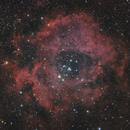 Rosette nebula,                                Ivan Bosnar