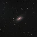 NGC 2903,                                Oliver Runde