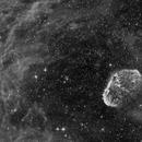 Crescent Nebula in HA,                                pterodattilo