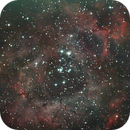 Rosette Nebula,                                allanv28