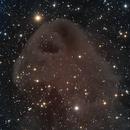 LBN 777 Baby Eagle Nebula,                                Dhaval Brahmbhatt