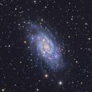 NGC2403,                                Joe Alexander