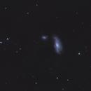 NGC 4490 Cocoon galaxy,                                HomerPepsi
