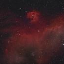 IC2177 Seagull Nebula,                                Marcel & Rahel