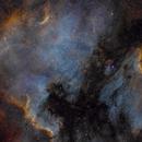 North American and Pelican Nebulae in SHO,                                  Alex Roberts