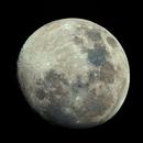 Luna - RASA,                                Andrew Marjama