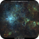 NGC2070 - TARANTULA NEBULA,                                Shaun Robertson