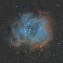 Rosette Nebula (NGC2237 - Caldwell 49),                                Ahmet Kale